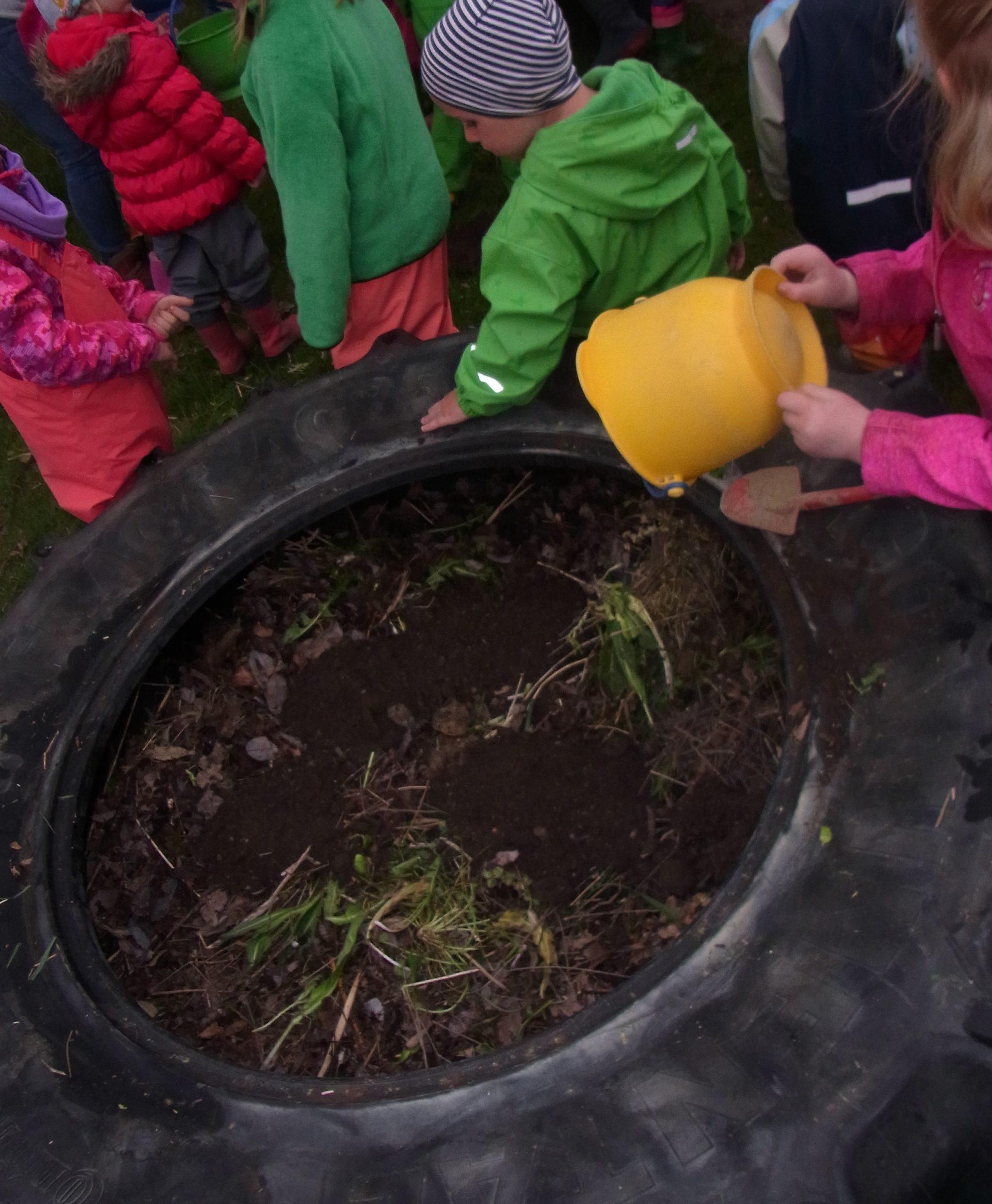 Grünsehen GartenProjekt